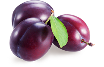 Plum clipart prunes. Png images free download