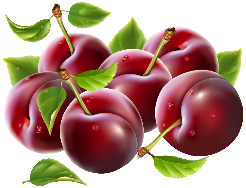 Plum clipart prunes. Png image gallery yopriceville