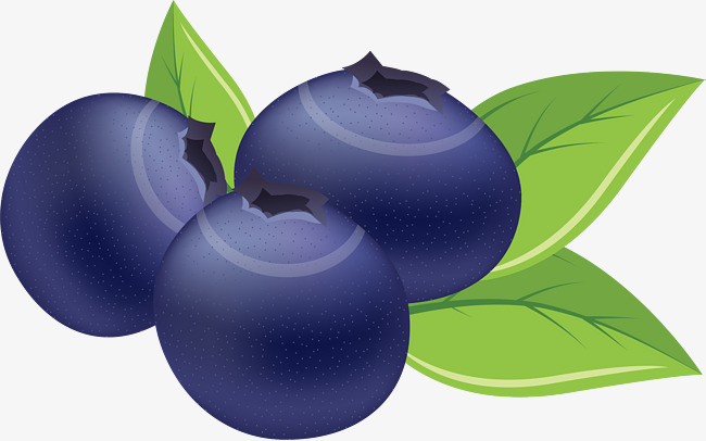 Plum clipart purple berry. Hand painted blue blueberry