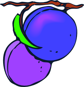 Plum clipart real. Plums clip art at