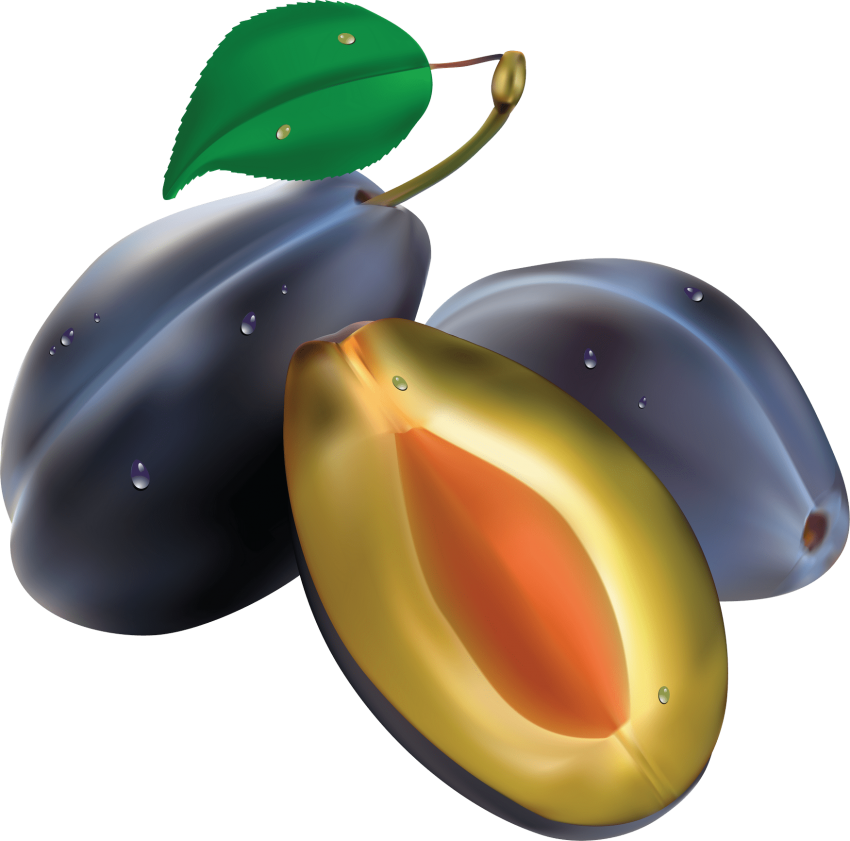 Plum clipart real. Free png toppng images