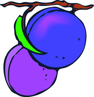 Sugar computer icons fruit. Plum clipart prunes image black and white