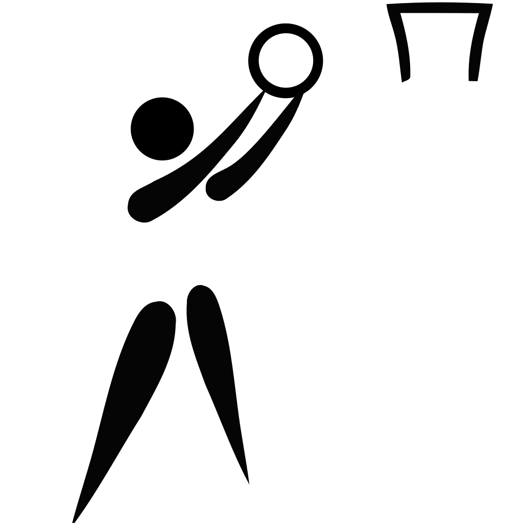 Characteristic vector figure pictogram. File netball svg wikipedia