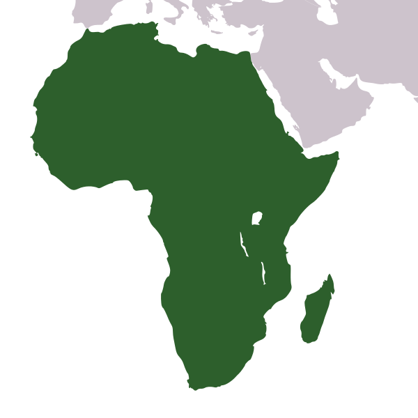 Png africa. File icon svg wikipedia
