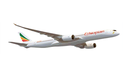 Png air lines. Ethiopian airlines academy partners