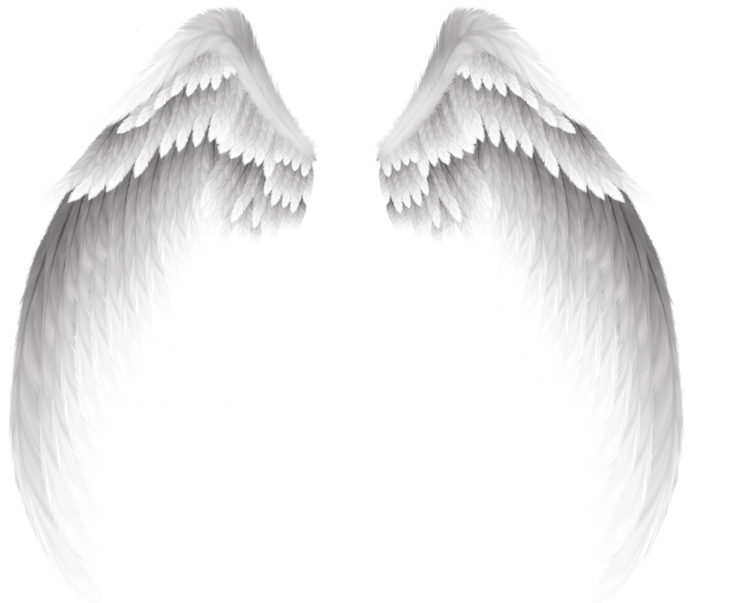 Clip art pretty white. Png angel wings banner royalty free library