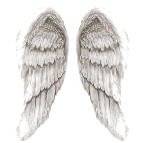 Png angel wings. Transparent image arts