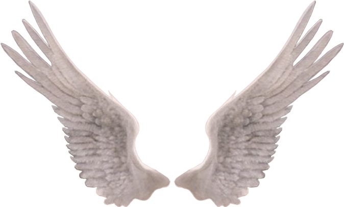 Edit photography freetoedit report. Png angel wings jpg free stock