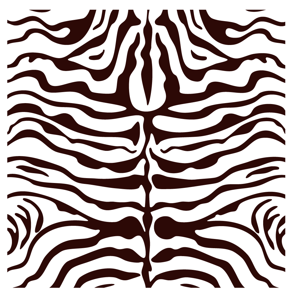 Png animal stripes. Carpet zebra shag print