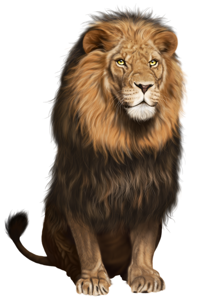 Png animals hd. Animal transparent images pluspng