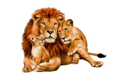 Png animals hd. Rk ed images pngio