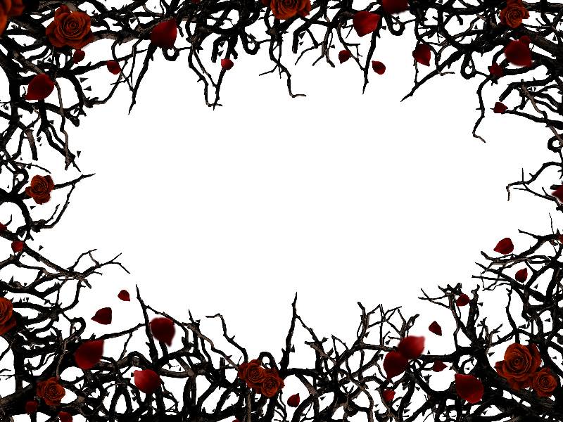 Thorns pattern png. Roses and border frame