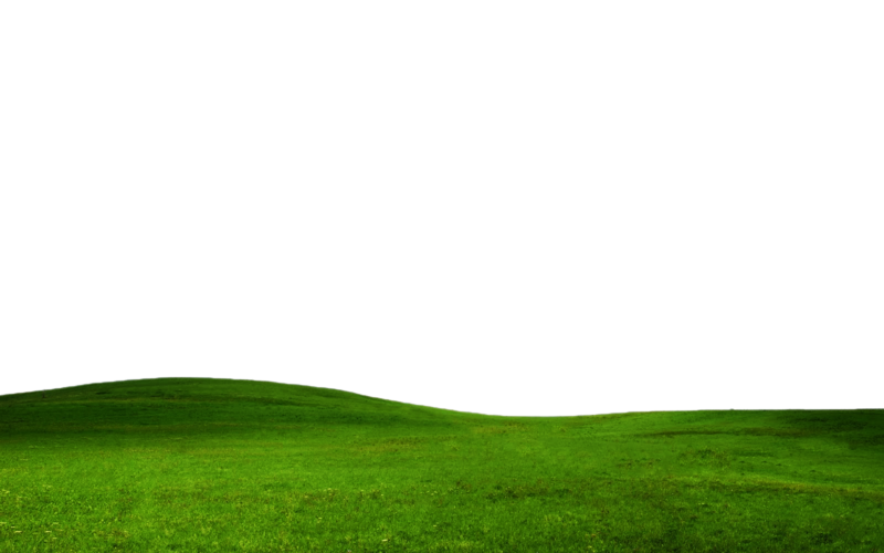 Grass hill png. Transparent pictures free icons