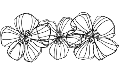 Png black flower. Image about tumblr in