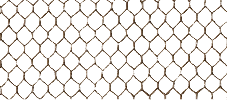 Transparent mesh net. Wire png images all
