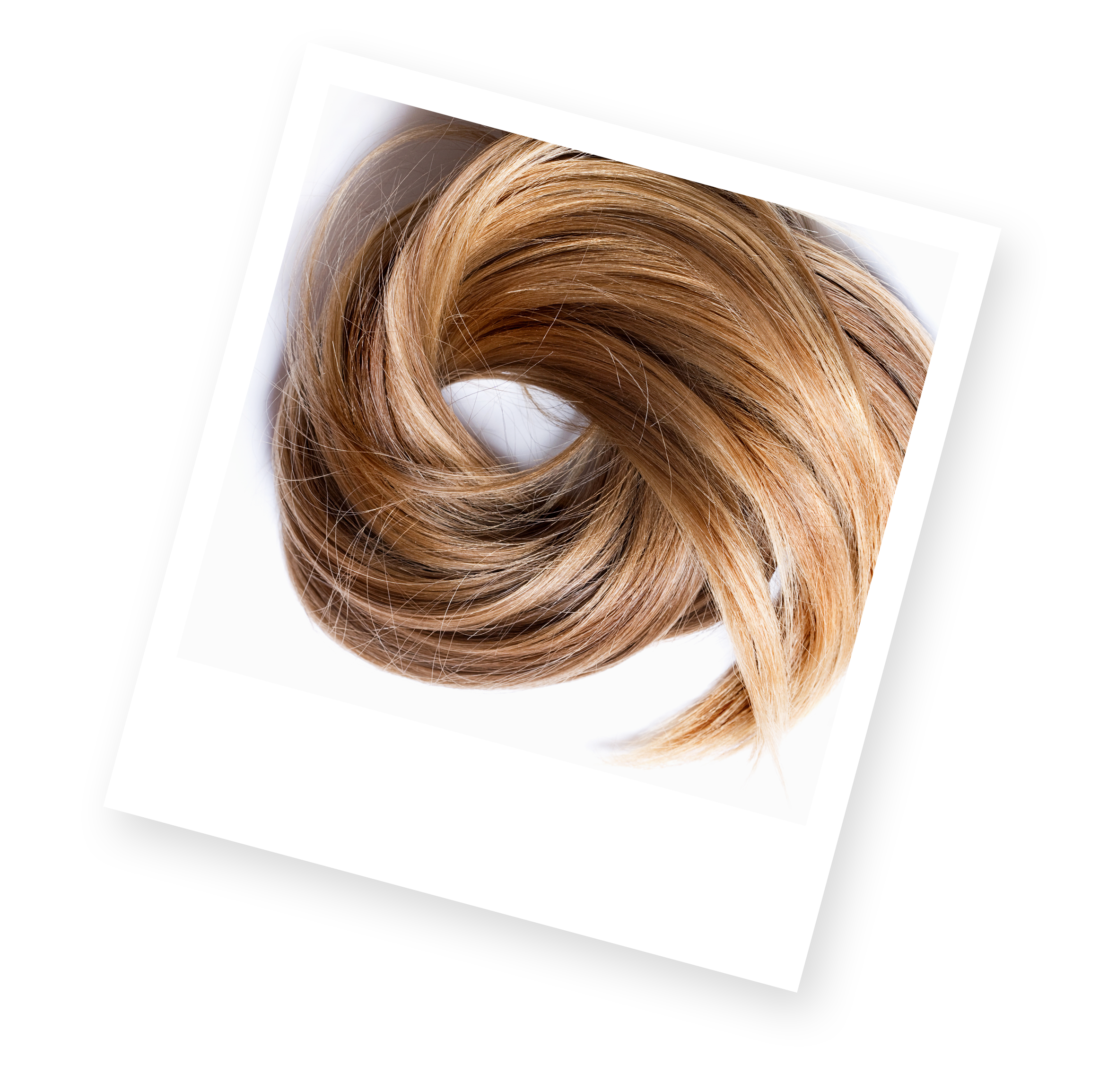 Png blonde hair. Introducing smart blondes photograph