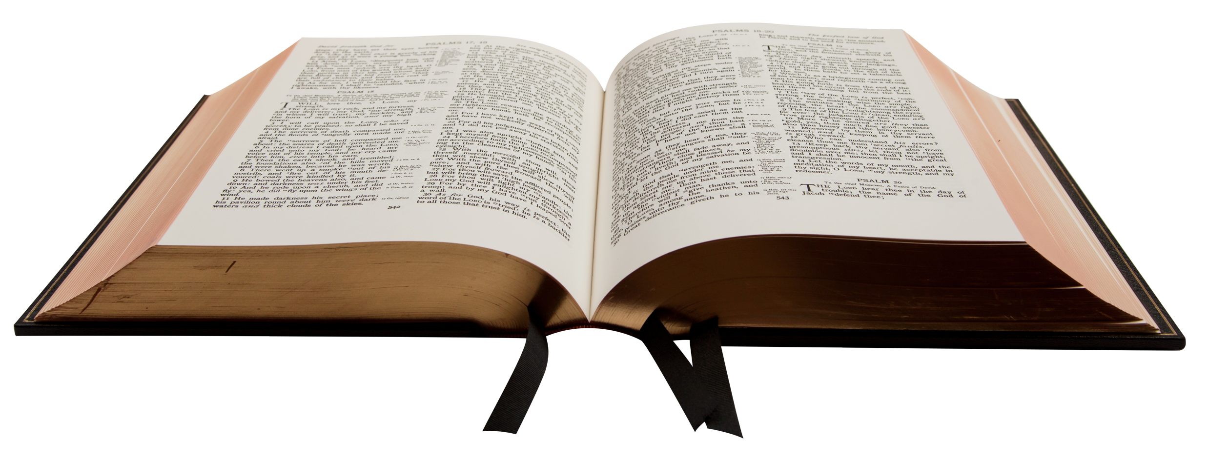 Png book. Bible transparent image best