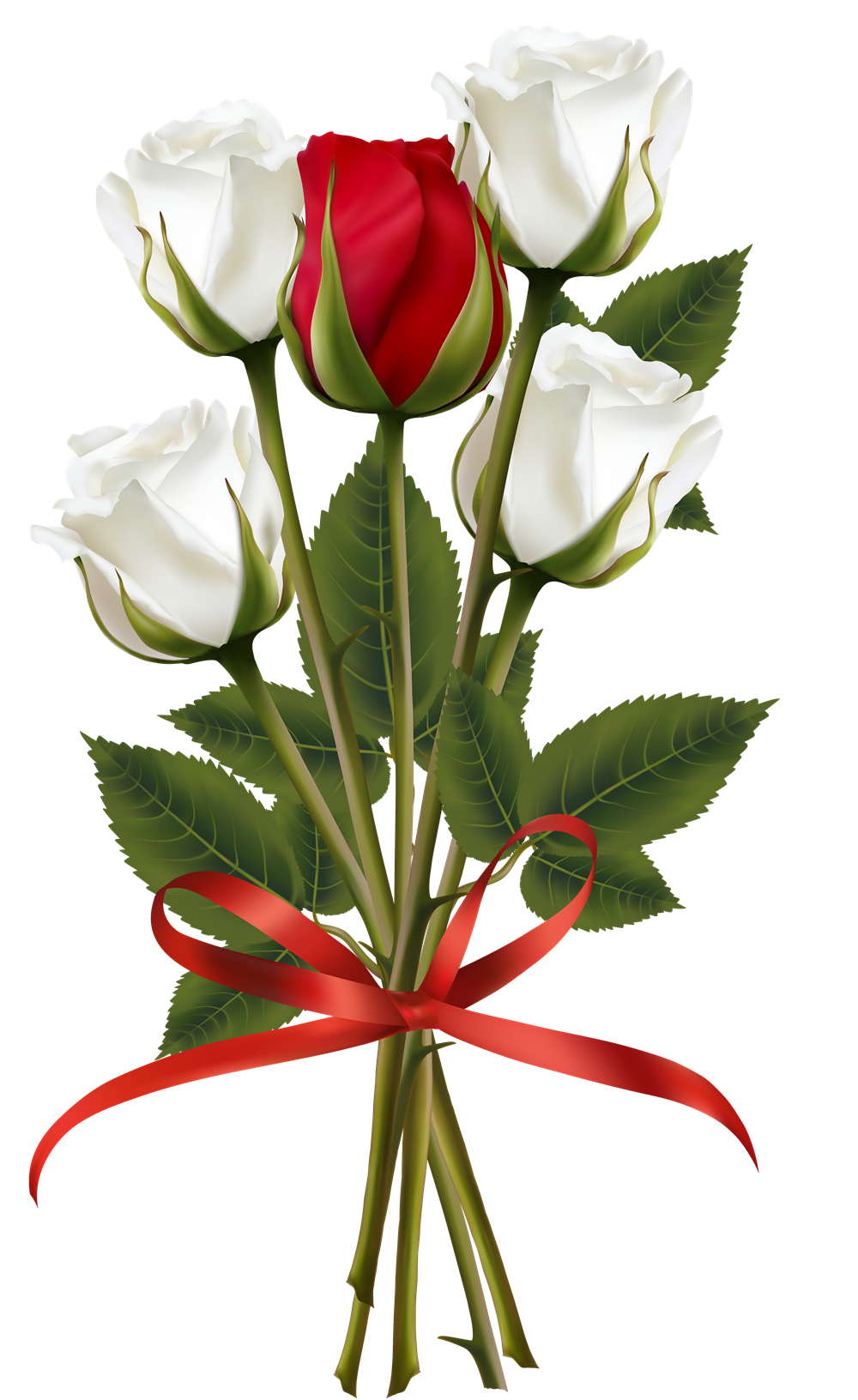 Png bouquet. Of rose flowers photo
