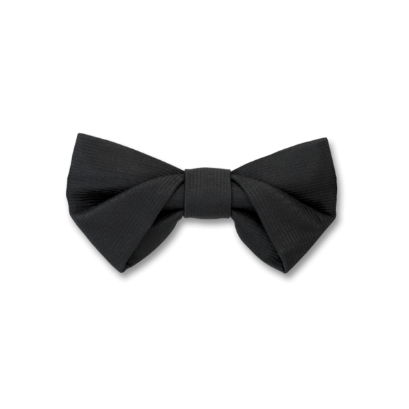 Png bowtie. Folding in black bow