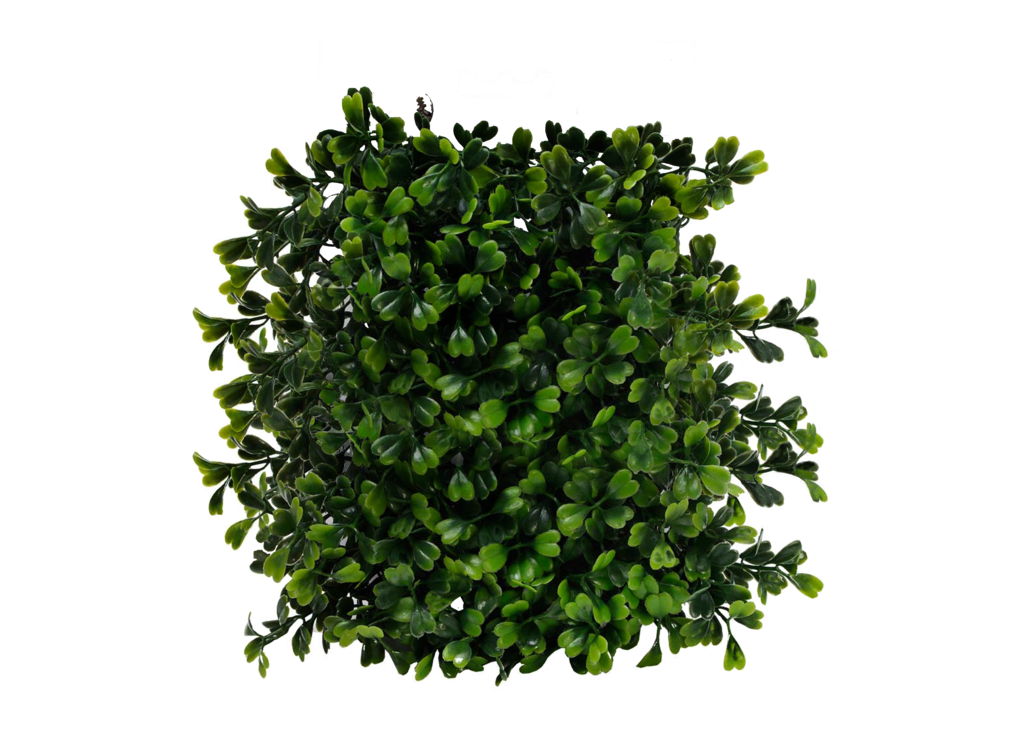 hedge png