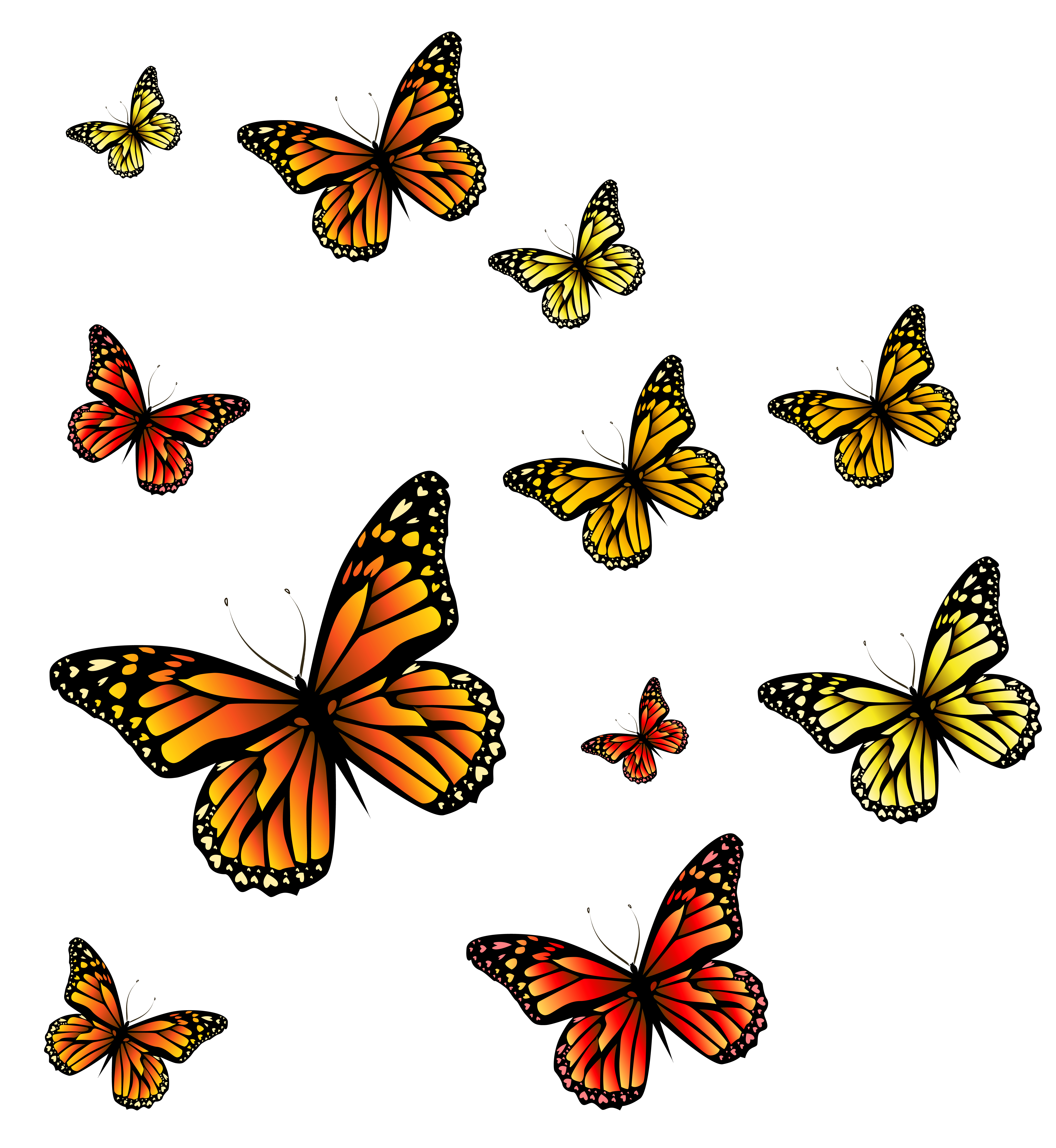 Png butterflies. Image gallery yopriceville high