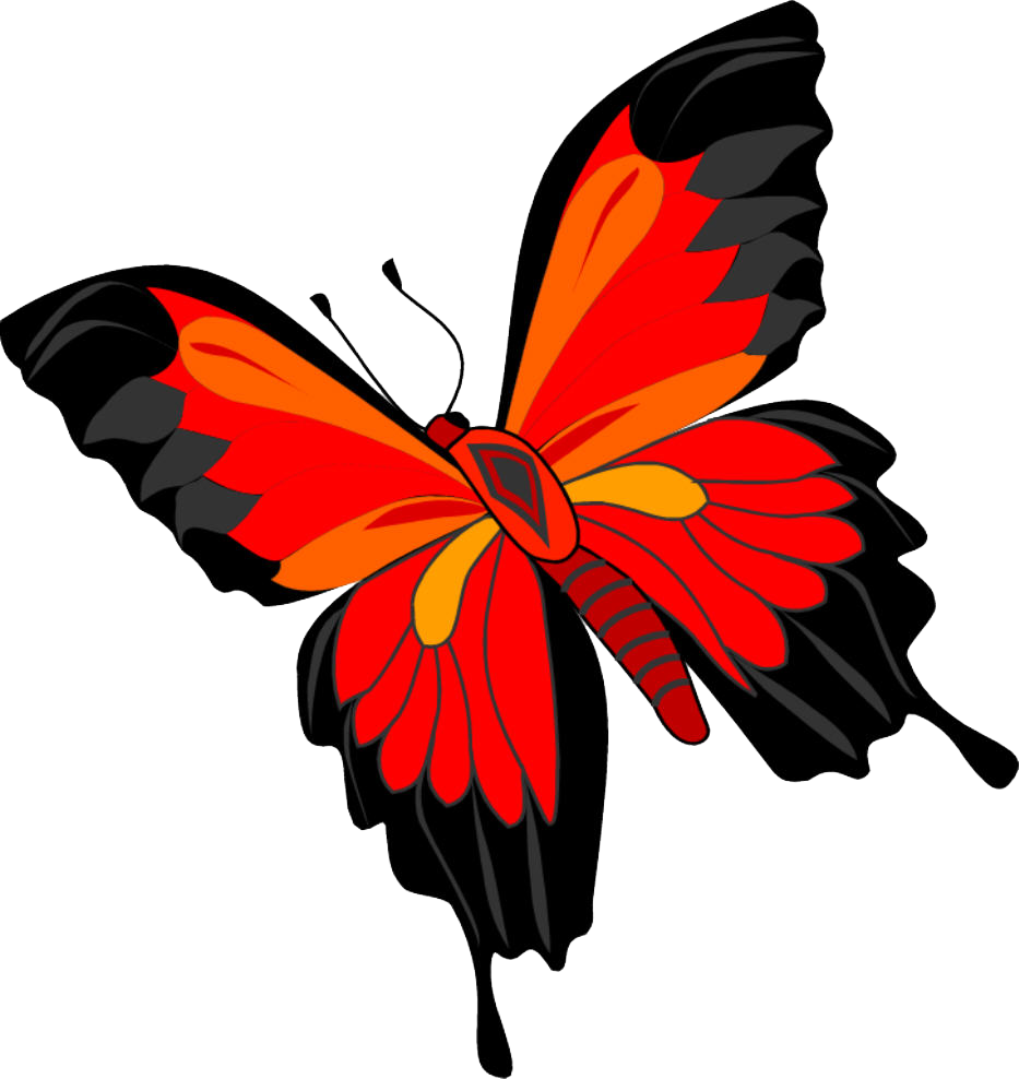 Png butterflies. Butterfly image free picture