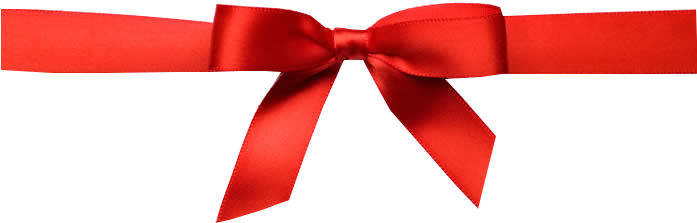 Png christmas bow. The perfect timmonsville sc