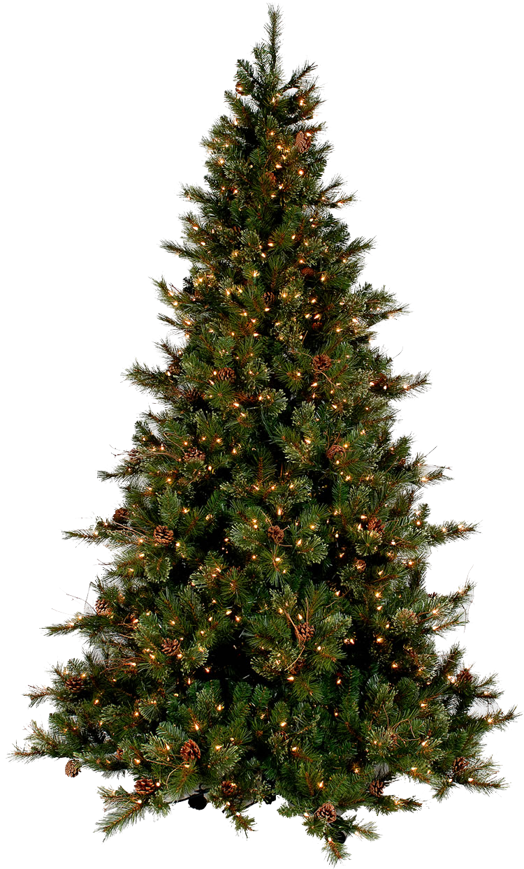 Png christmas tree. Transparent images all picture