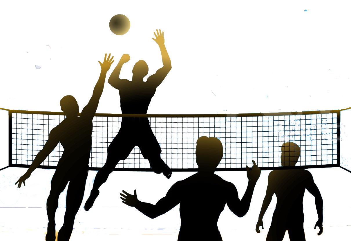 Volleyball images free download. Png clipart sports vector transparent library