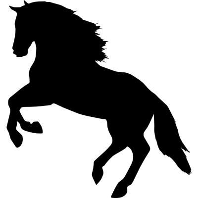 Head on stick png transparent. Horses images page stickpng