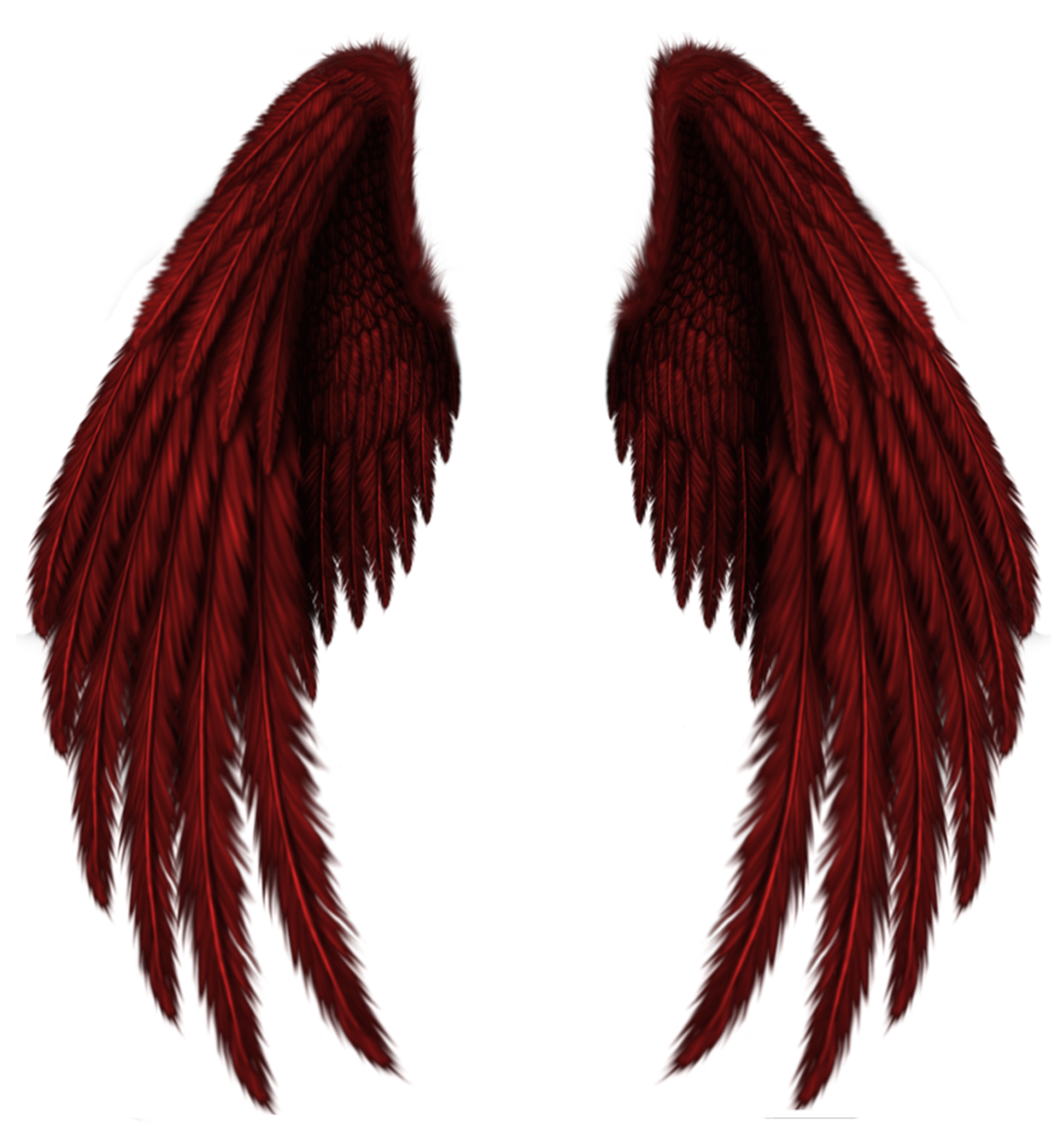Realistic devil horns png. Transparent red wings clipart