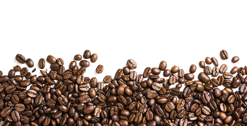 Coffee png images pngio. Beans vector transparent picture black and white stock