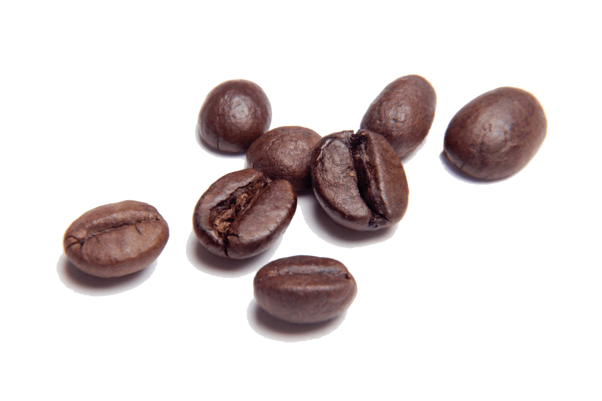 Png coffee beans. Transparent stickpng