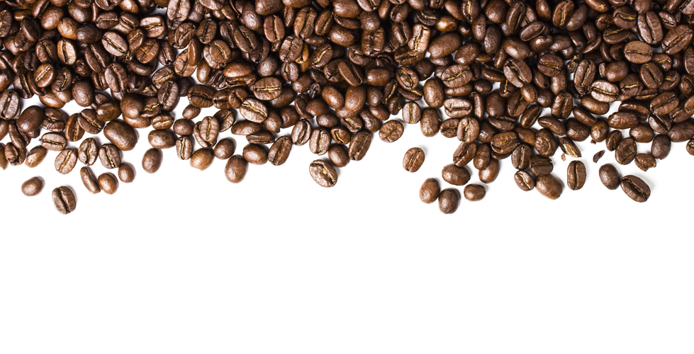 Beans vector transparent background. Download coffee png picture
