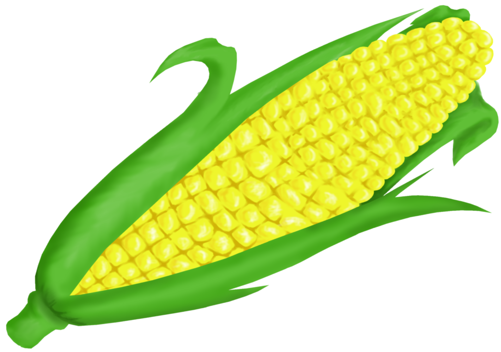 Png corn. Free on cob clip