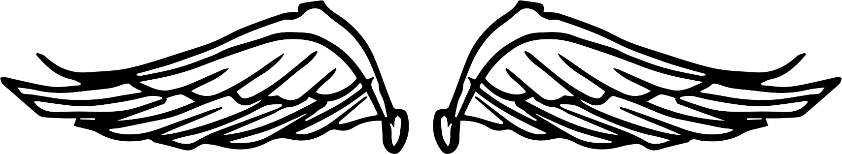 Png doodle. Raseone wings icons free