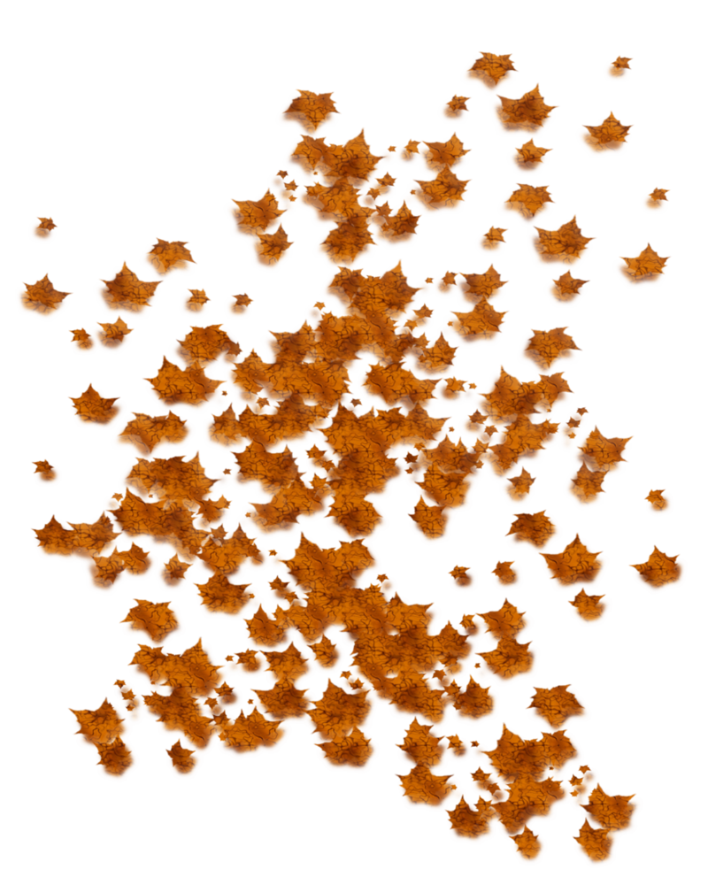 Png falling leaves. By moonglowlilly on deviantart