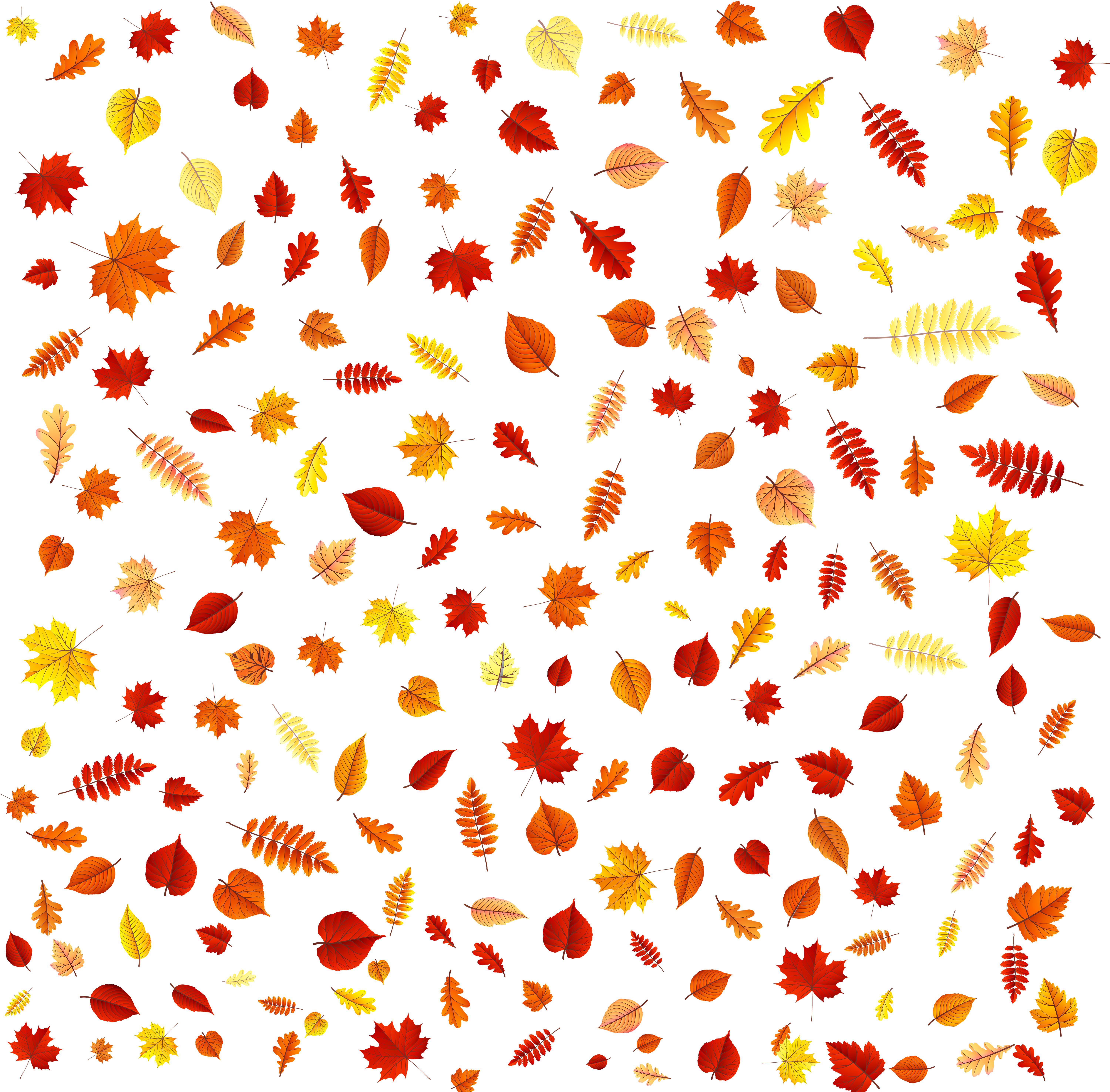 Leaves overlay png. Fall transparent clip art