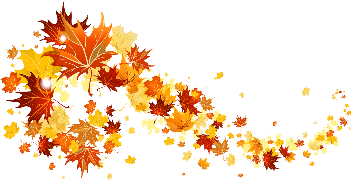 Png falling leaves overlay. Leslie crowley on twitter