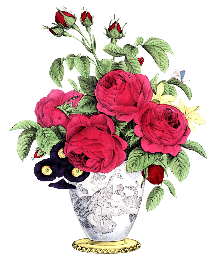 Png flower bouquet various. Free clipart vase with