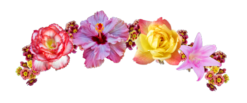 Flowers crown png. Flower transparent pictures free