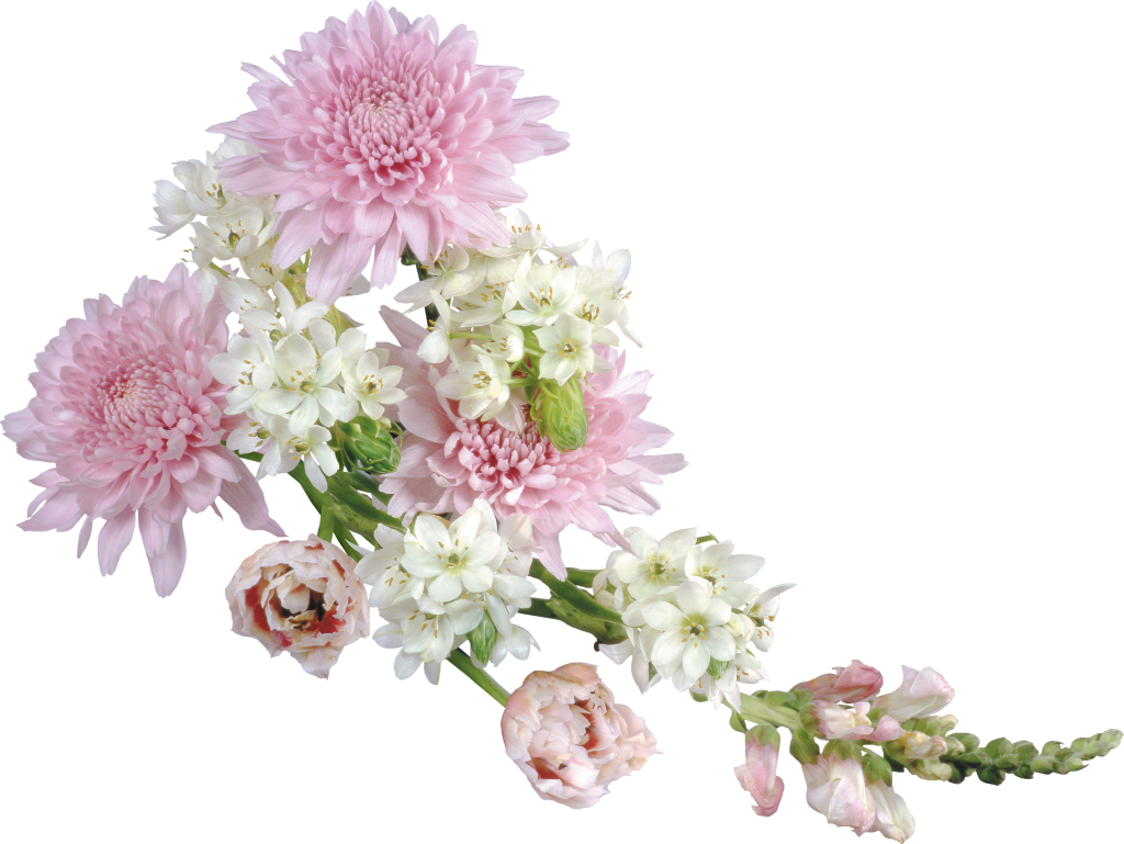 Png flower images with transparent background. Soft arrangement clipart gallery