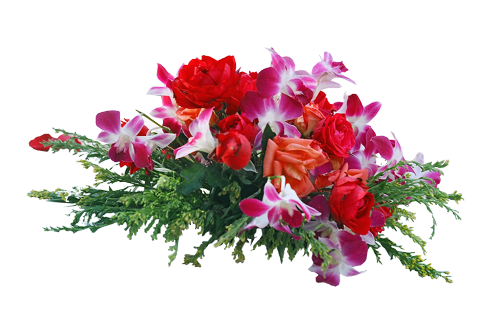 flowers transparent png