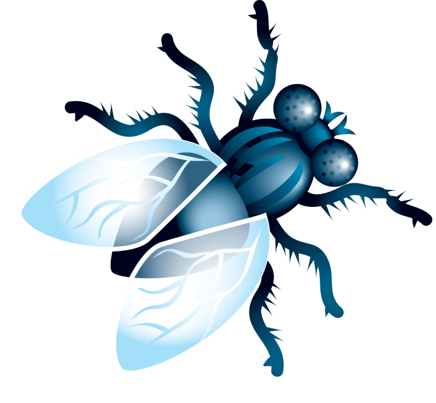 Png fly. Free images toppng transparent