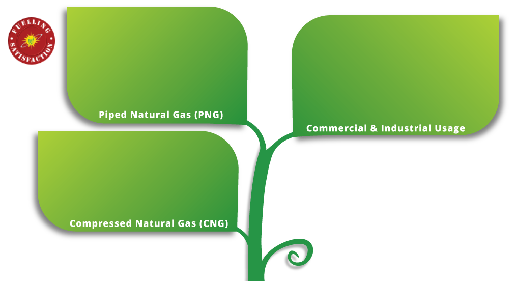 png gas bill payment