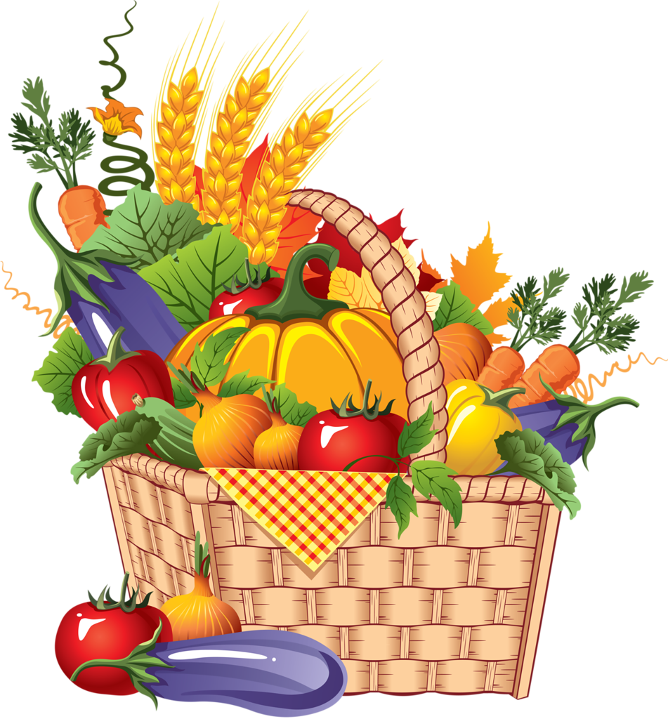 Vector vegetables fresh vegetable. Png pinterest clip