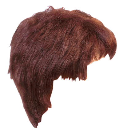 Png hair styles. Download hairstyles free transparent