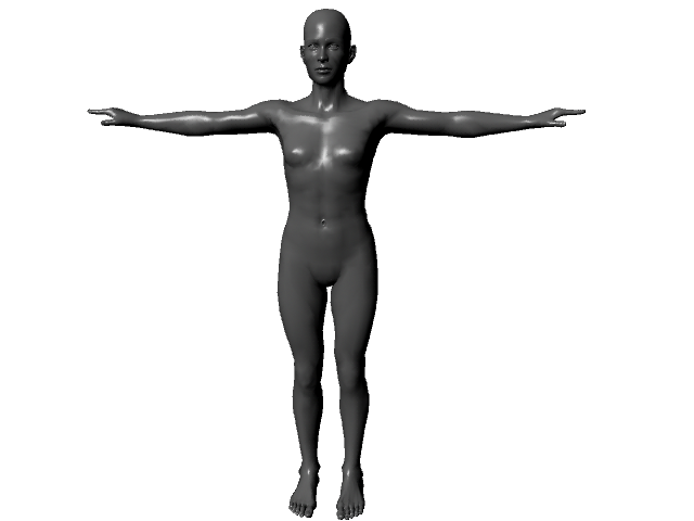 Png human body. D download free