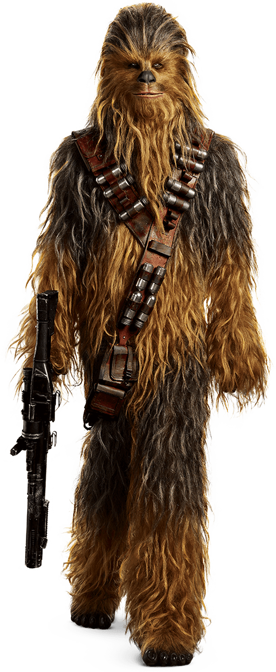 Png image transparent background. Characters of solo a