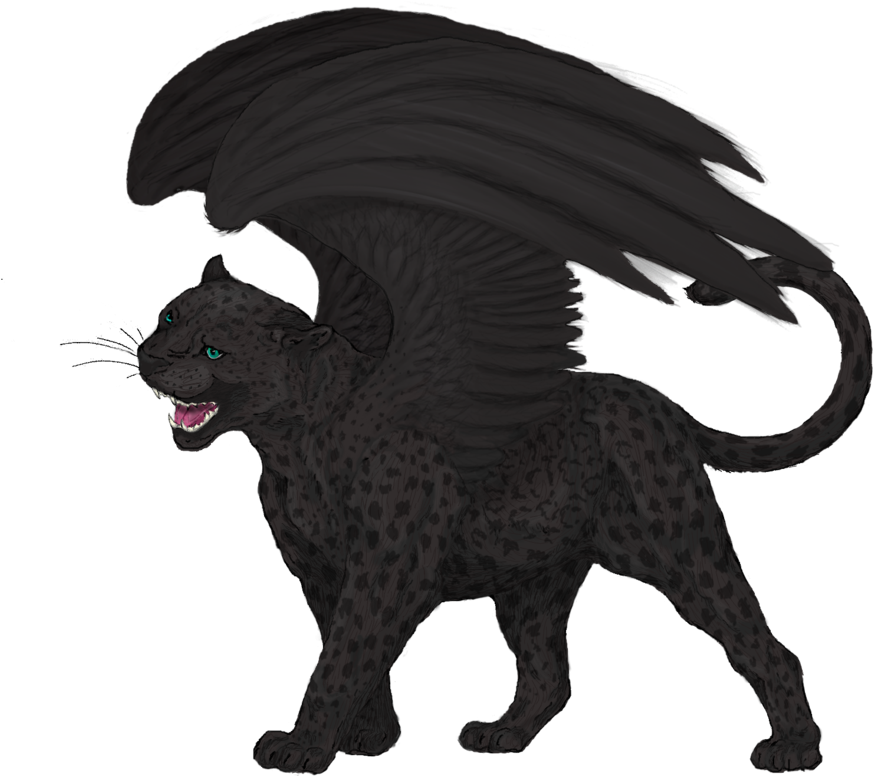 Drawing panther leopard. Download black felidae cat